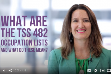 What are the TSS 482 occupation lists and what do these mean