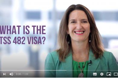 What is the TSS 482 visa?